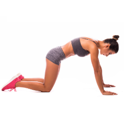 Exercises for Back Fat cat stretch