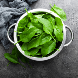 spinach Foods High in Iron