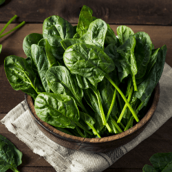 15 Lowest Sugar Vegetables for Living Healthy Spinach